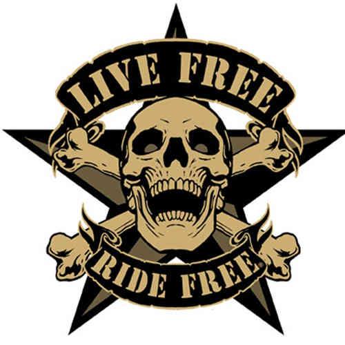 Harley Davidson Logo Pnj